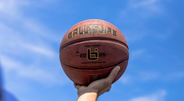 http://shop.ballislife.com/ballislife-indoor-basketball/