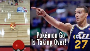 bil-pokemon-gobert