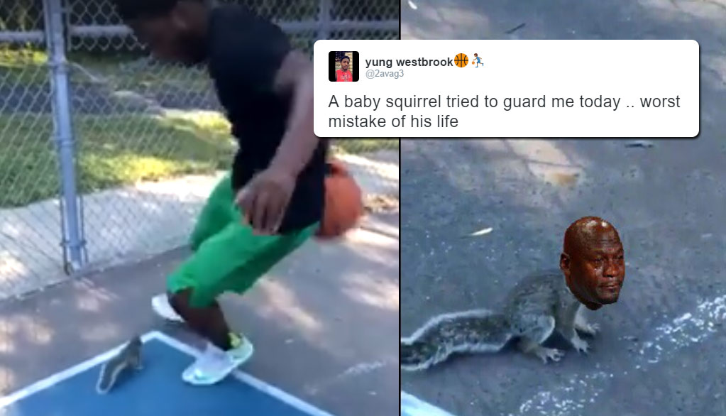 Not Even Baby Squirrels Are Safe From Yung Westbrook & The Internet