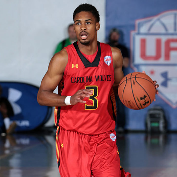 Seventh Woods